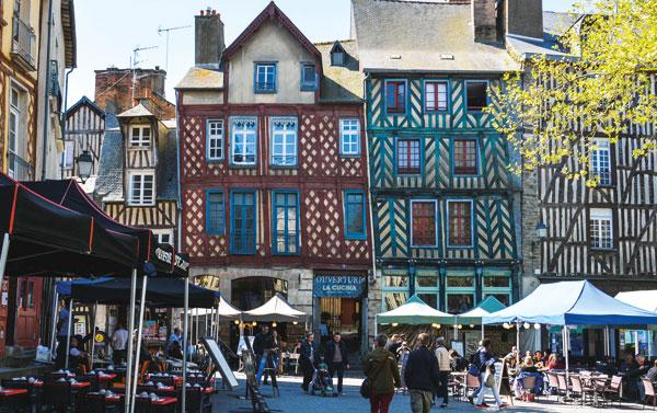 Garde de chien ou chat entre particuliers à Rennes