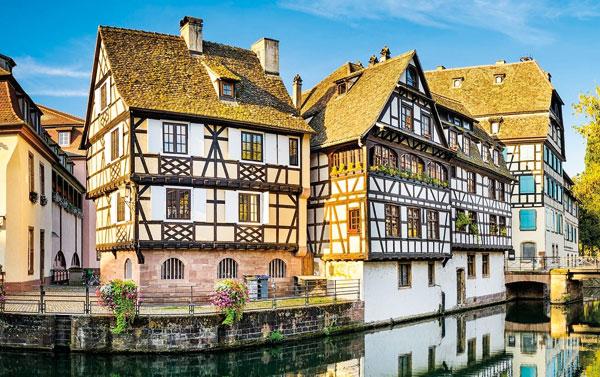 Garde de chien ou chat entre particuliers à Strasbourg